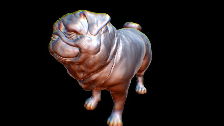 MooToo Cute Pug 3D Model