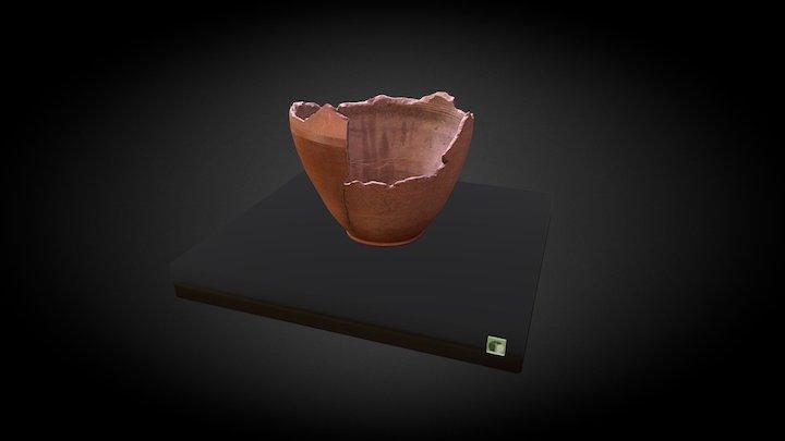 DOLIUM 3D Model