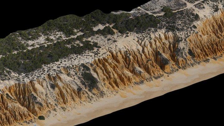 Arriba Fóssil da Galé 3D Model