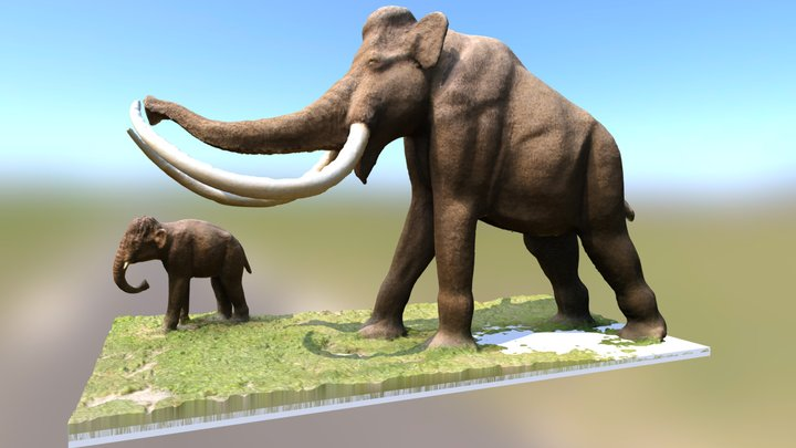 Mammouth laineux 3D Model