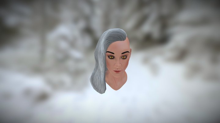 Female Witcher Bust [WIP] 3D Model