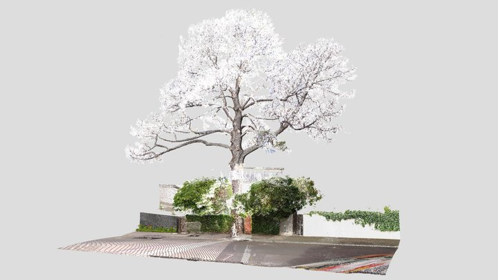 A Tree to Remember Campaign 3D Model