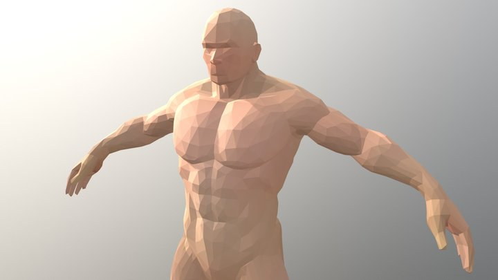 Man Mesh Faceted Style 3D Model