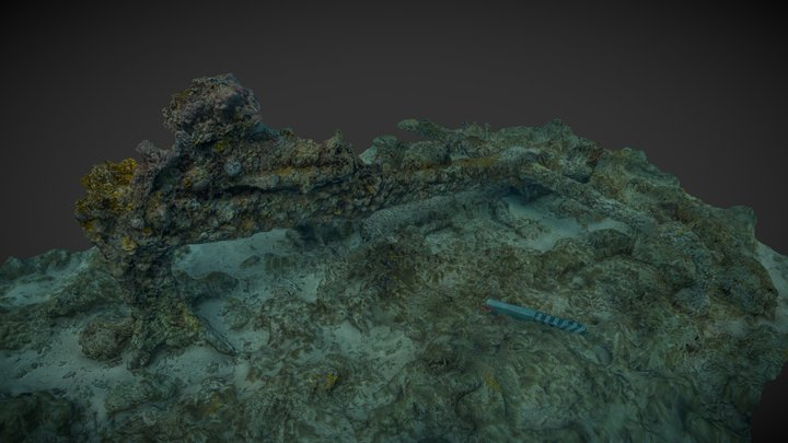 Anchor, Dry Tortugas National Park 3D Model
