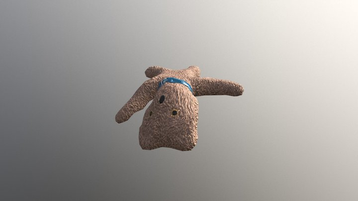 Scruffy Teddy 3D Model