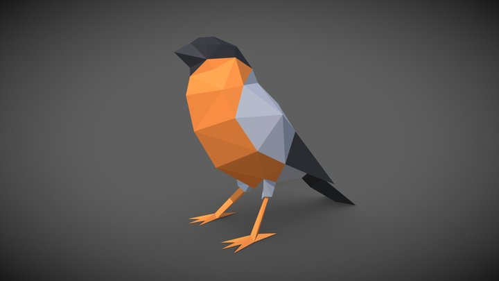 Bird - Bullfinch 3D Model