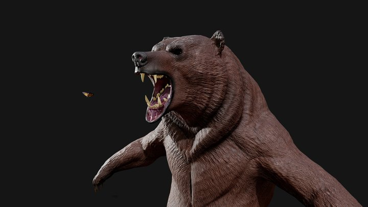 Strong Bear 3D Model