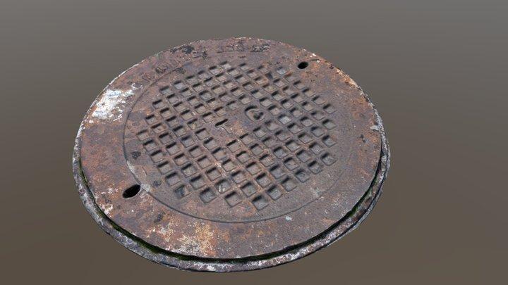 manhole cover 3d scan 3D Model