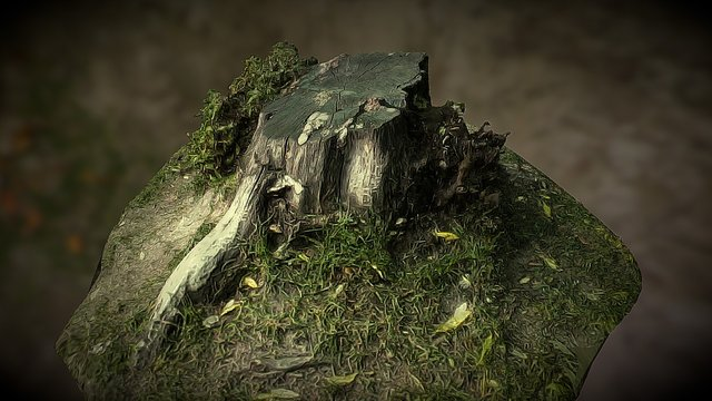 Stump - photos from your smartphone 3D Model