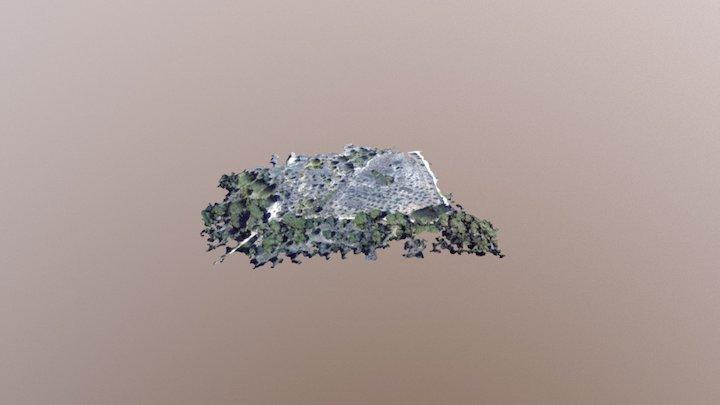Castell de Pedra 3D Model