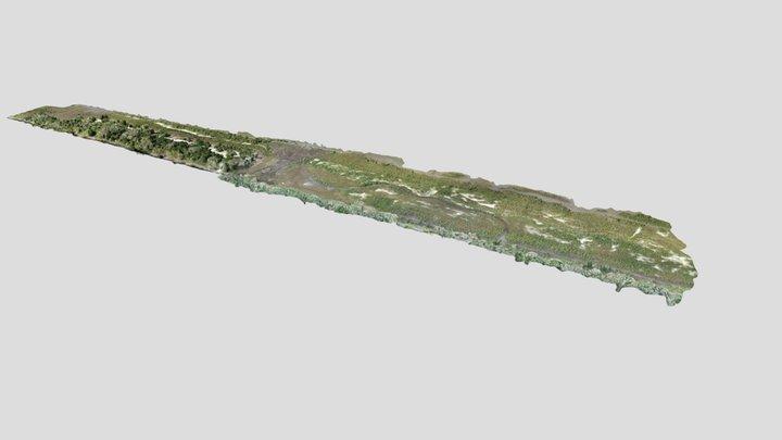 Flagler Restoration: North Peninsula 3D Model