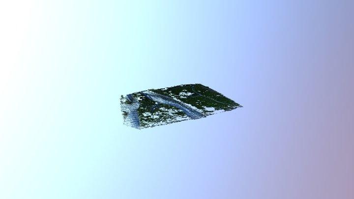 伐採前ドローン測量【常願寺川】 3D Model