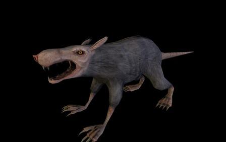 Rat1 3D Model