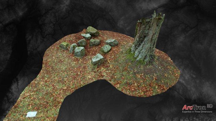 Autumn Forest 3D Model