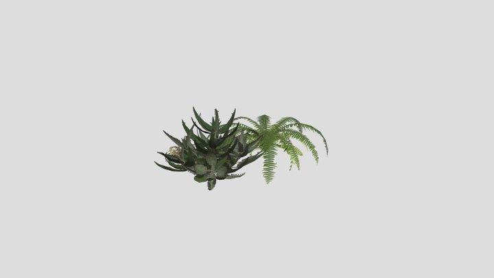 All Plants 3D Model