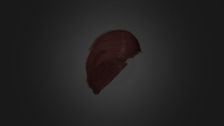 Hairs Test 3D Model
