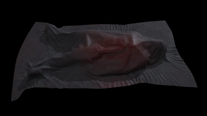Low Poly Dead Body Covered Game Ready 3D Model