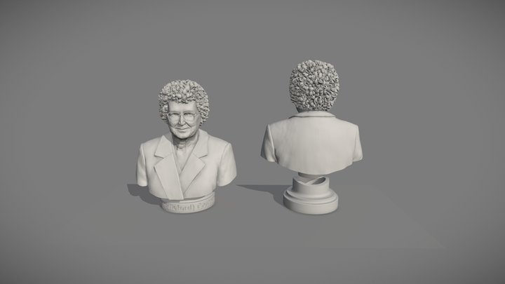Final Set of Three Busts - Bust Number 2 3D Model