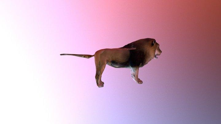 Lion A Tpose 3D Model