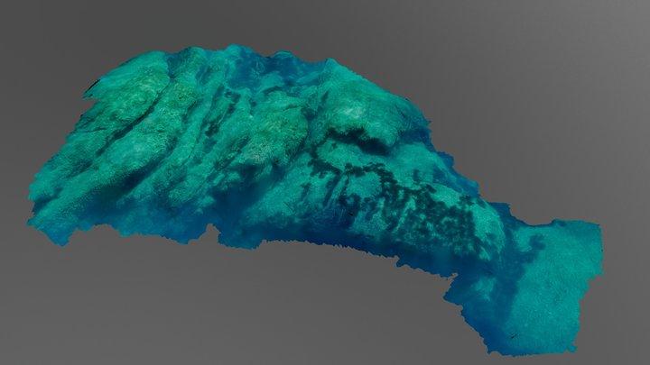 Rocky seafloor 3D Model