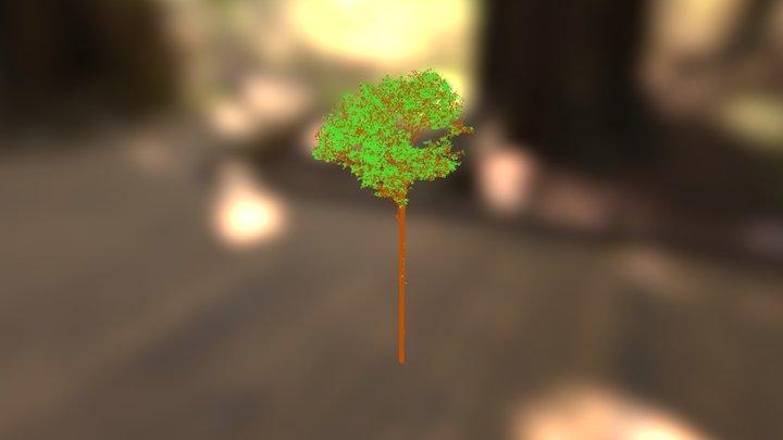 Amazon FACE: tree 1 3D Model