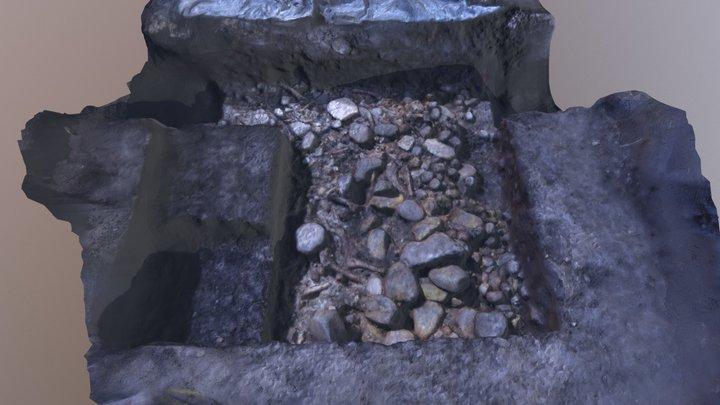 Cave Creek Midden Level 2 3D Model