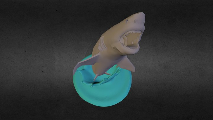 Shark 3D Model