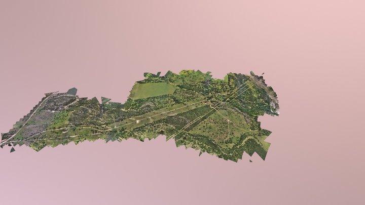 Ped 3D Model