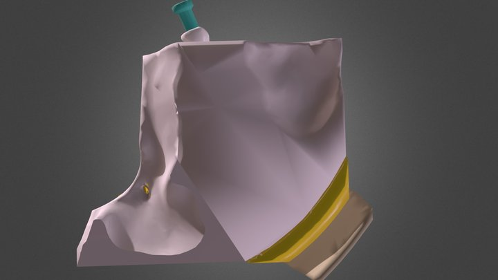 Eyemodel Sketchfab 3D Model