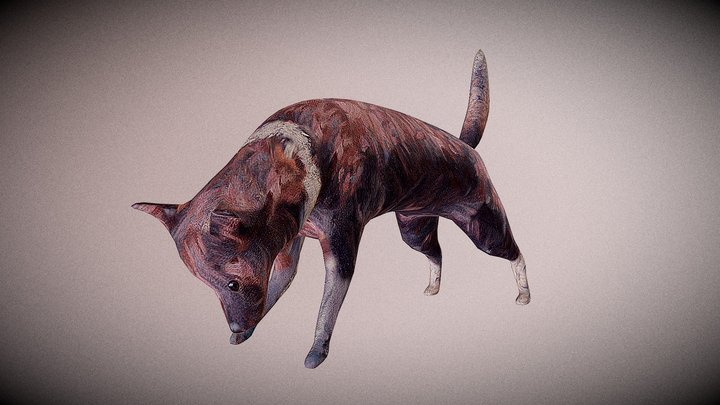 painted dog 3D Model