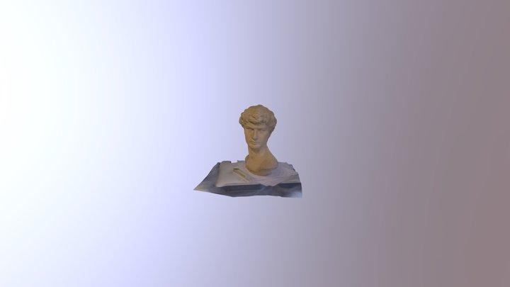 Kopf 3D Model