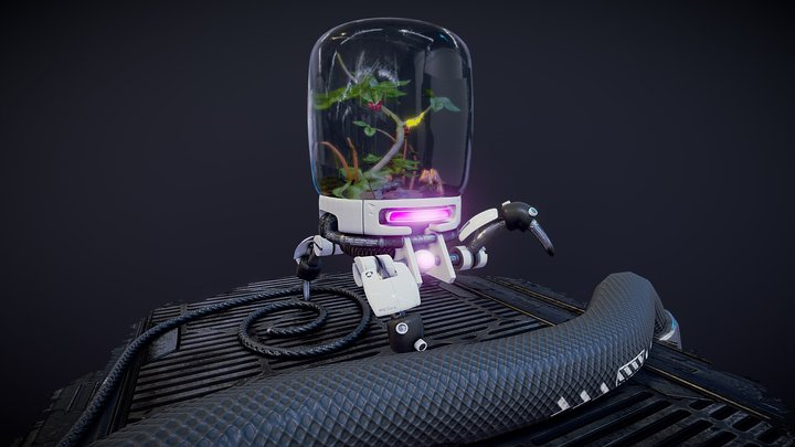 Terrarium Bot 3D Model