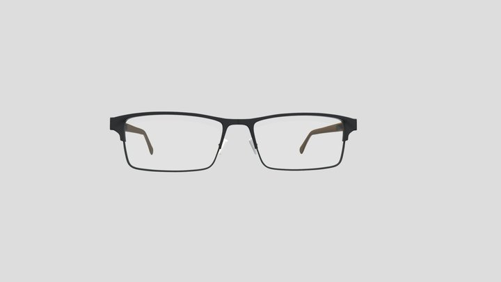 Titanium Frame Glass 3D Model