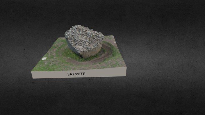 Saywite 3D Model