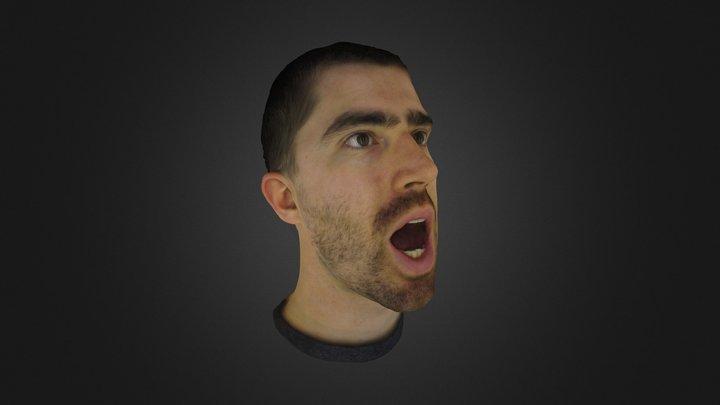 Head scan 3D Model