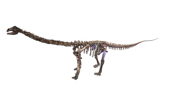 ภูเวียงโกซอรัส สิรินธรเน (Phuwiangosaurus sirind 3D Model