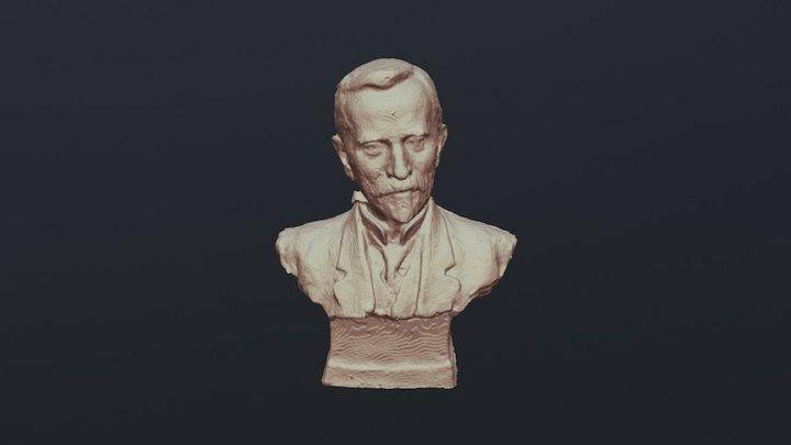 Bust Portrait of an Unknown Man 3D Model