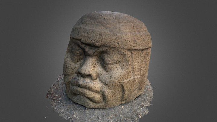 Cabeza colosal Olmeca de Nestepe 3D Model