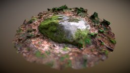 Flat Stone 3D Model