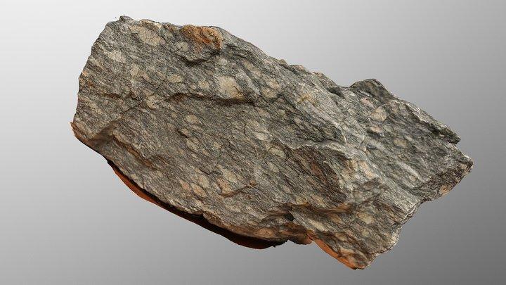 Mylonite 3D Model