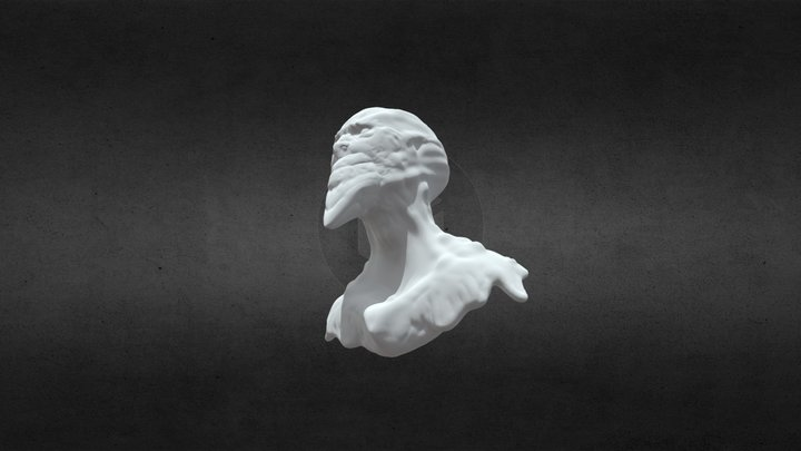 Face study 3D Model