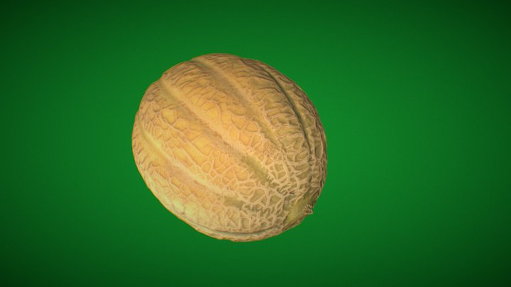Photogrammetry Melon 3D Model