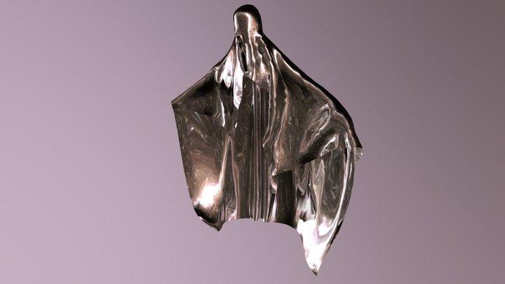 Shroud 3D Model