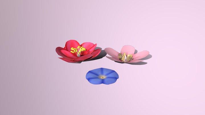Organics: Flowers 3D Model