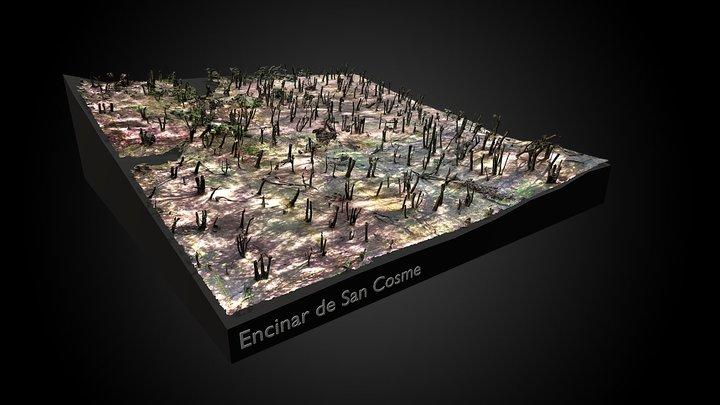 Encinar de San Cosme 3D Model