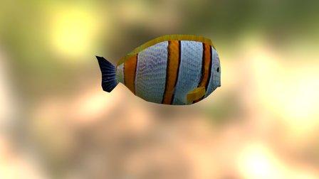 Fish Orange 3D Model