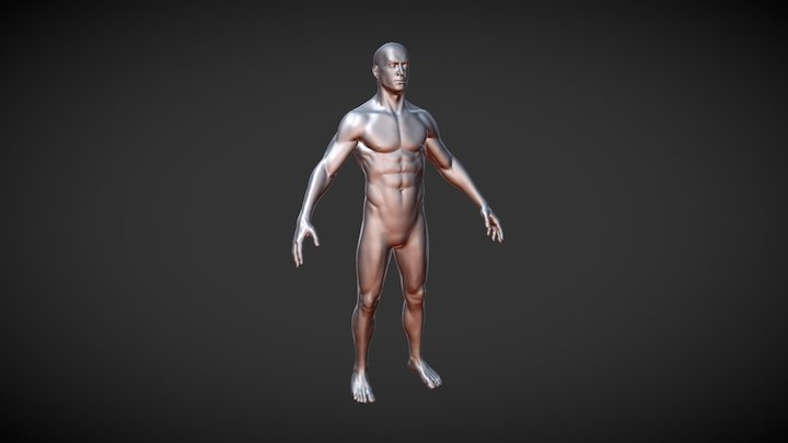 Base Male Sculpt (Free Download) 3D Model