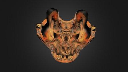 Omnichronk 3D Model