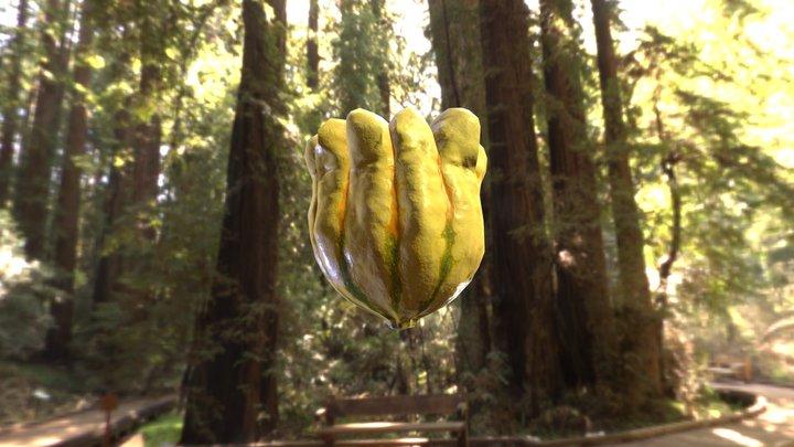 Exotic pumpkin 1 + RAW scan data 3D Model