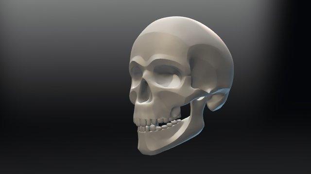 Skull Planes 3D Model